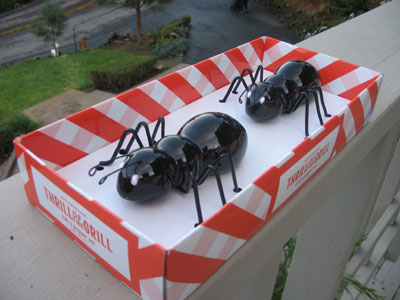 Ant Salt and Pepper Shakers